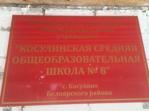 Школа Косулино номер 8