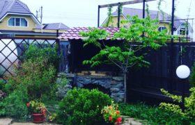 Высадка растений в Косулино